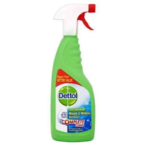 Dettol Mould & Mildew Remover Spray 750ml